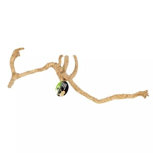 ProRep Bamboo Root Branch Medium
