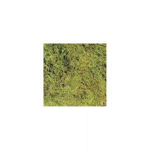 ZooMed Terrarium Moss, Large 3.28L, CF-2L