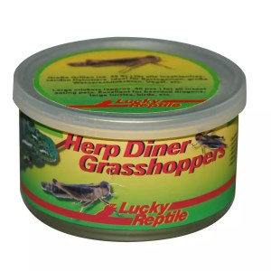 Lucky Reptile Herp Diner Grasshoppers Medium
