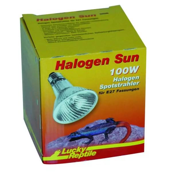 Lucky Reptile Halogen Sun 100W