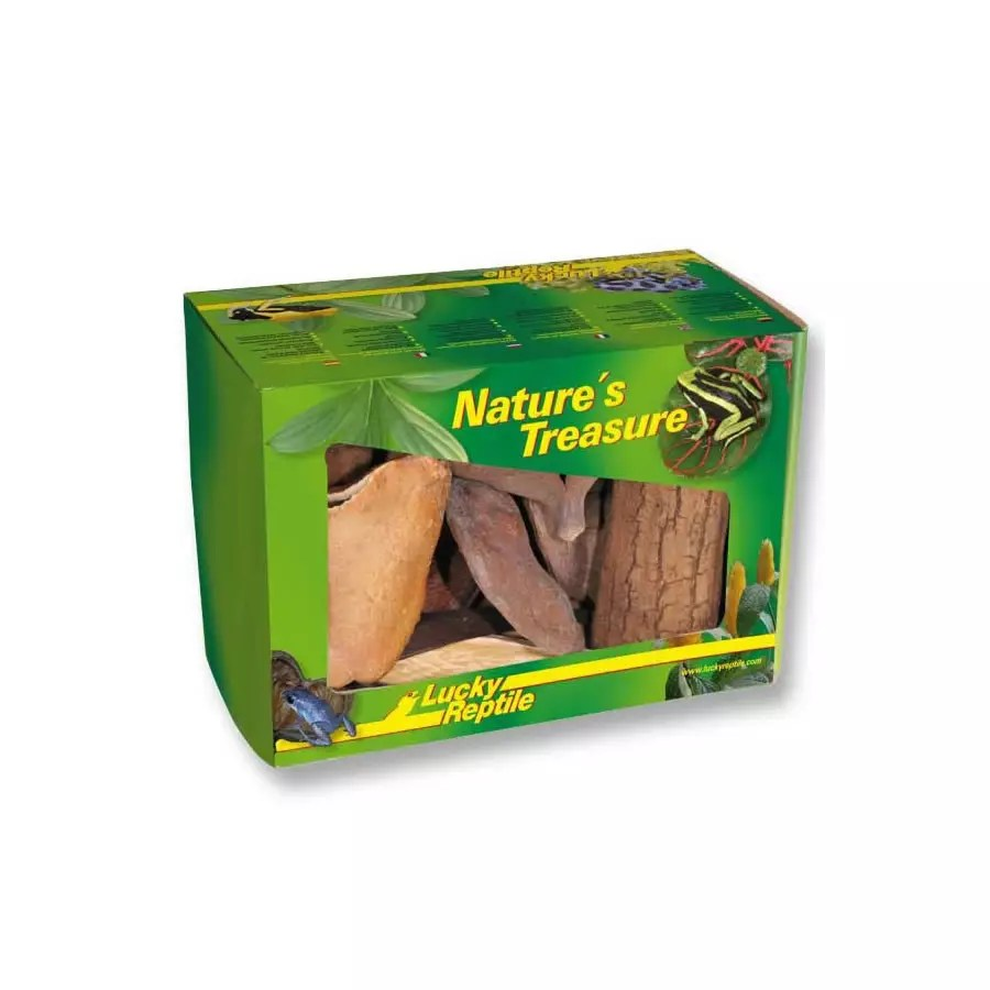 Lucky Reptile Nature's Treasure Decor Box