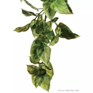 Exo Terra Plastic Plant Amapallo Large
