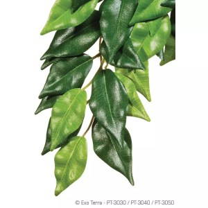 Exo Terra Silk Plant Ficus Large