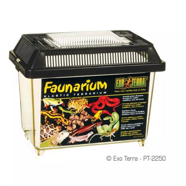 Exo Terra Standard Faunarium Mini