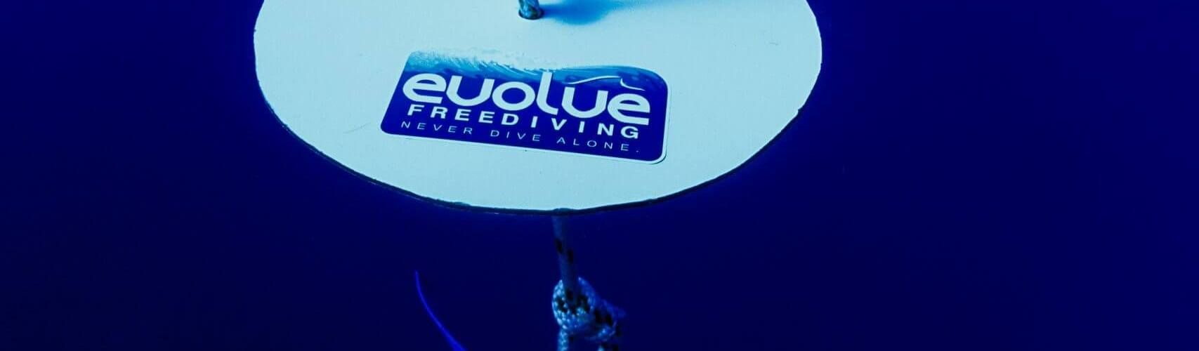 Freediving plate end of the line blue water freediving course
