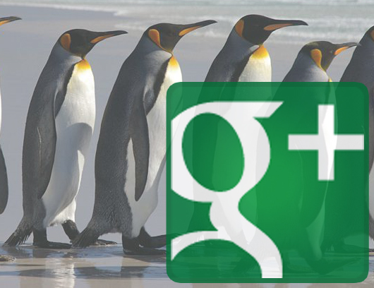 google penguin what is