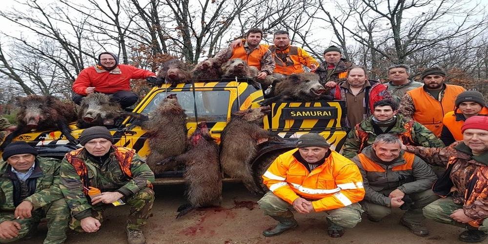 Ρεκόρ στο κυνήγι αγριογούρουνου λίγο πριν τη λήξη, για παρέες κυνηγών απ' το Διδυμότειχο