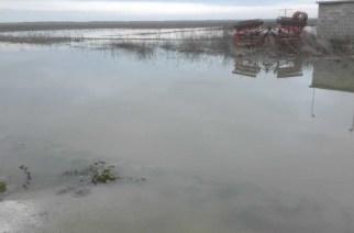 Καθυστερούν οι αποζημιώσεις. Στα όρια της απόγνωσης οι πληγέντες παραγωγοί του Έβρου από τις πλημμύρες
