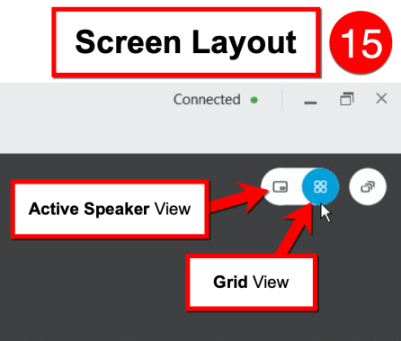 Screen Layout - Active Speaker View / Grid View