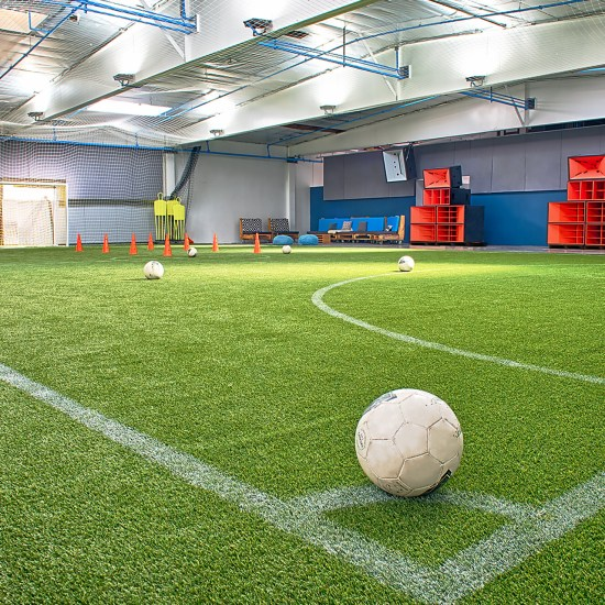 Indoor turf pitch at EVSA