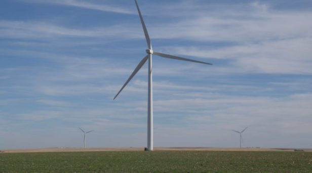 Puerto Rico   REVE News of the wind sector in Spain and in the world