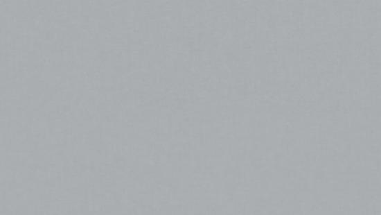 Image result for iris valter popa