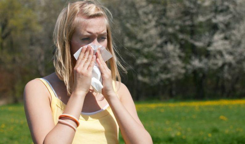 Trápí vás na jaře alergie? Dejte na okna a dveře sítě