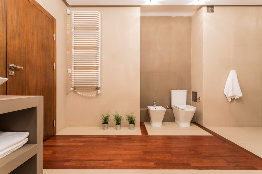 35980385 – lavatory and bidet in contemporary toilet with wooden elements