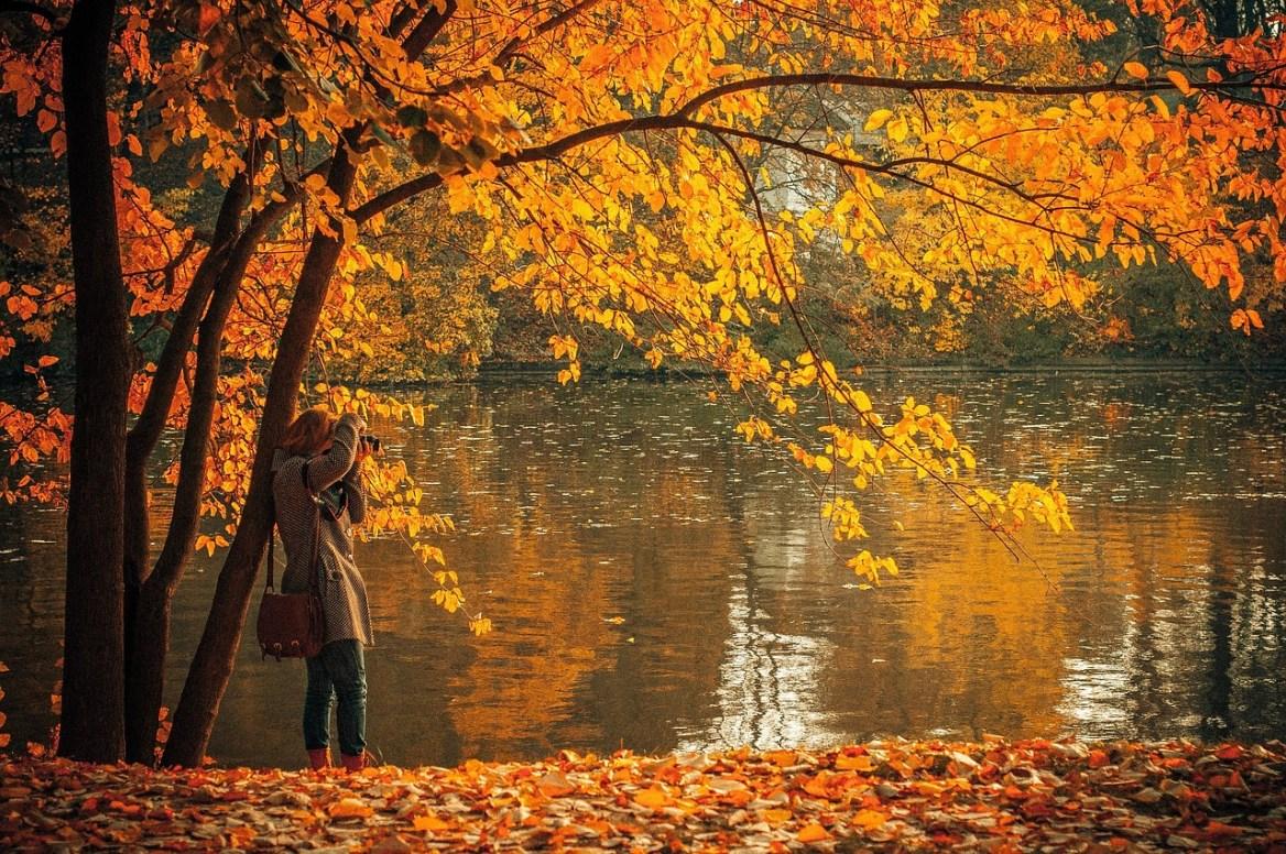 Podzim – Creative Commons (Pixabay)