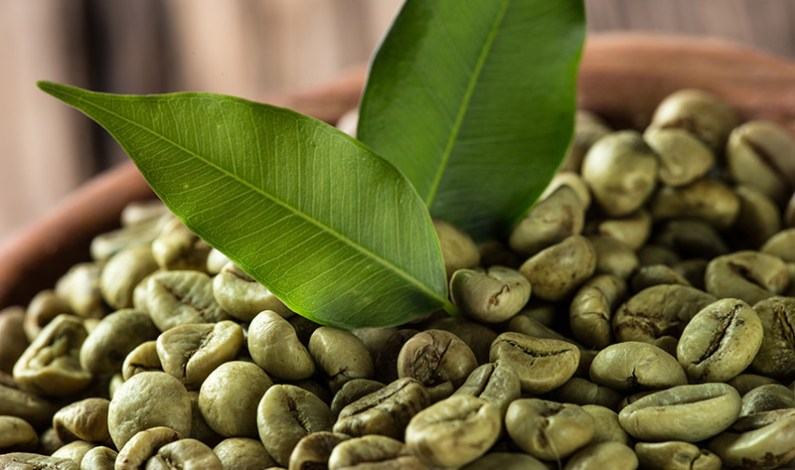 Hubnutí se zelenou kávou