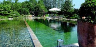 Bazén alebo záhradné jazierko?