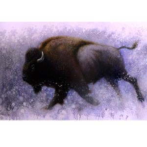 Ewoud-de-Groot-wildlife-art-artist-animals-birds-oil-painting-canvas-exhibition-Bison