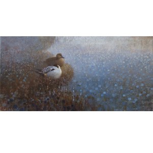 ewoud-de-groot-wildlife-art-artist-animals-birds-oil-painting-canvas-linen-resting-pintails