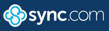 Sync drive