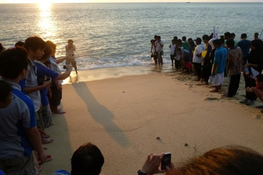 Making way for the baby turtles