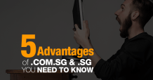 advantages of sg domain