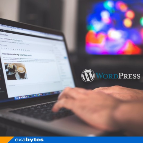 WordPress logo with editing view