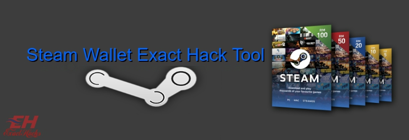 Porte-monnaie Steam exacte Hack outil 2019