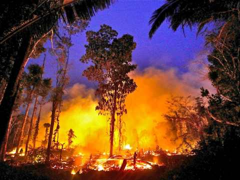 A fire burns a tract of Amazon jungle on September 2, as it is cleared by a farmer in Machadinho do Oeste, Brazil. The Brazilian Catholic bishops are pressuring the government to guarantee the safety of several Amazonian indigenous peoples. Photo:CNS /Ricardo Moraes, Reuters