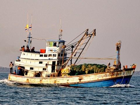 Fishing boat along Koh Samet, Thailand. Photo: Wikimedia/Philippe Gabriel, CC BY 2.0