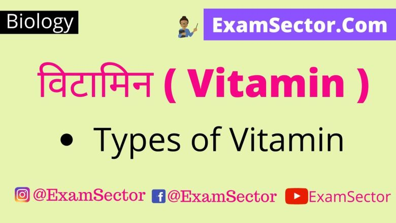 What is Vitamin ( Vitamin kya hai ) ,