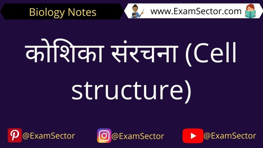 Cell Structure and Function Notes in Hindi