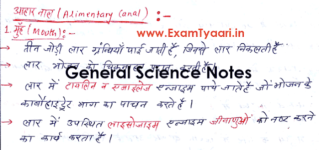 Important Handwritten General Science Notes for SSC and IBPS and SBI Bank Exams [Download PDF] - Exam Tyaari