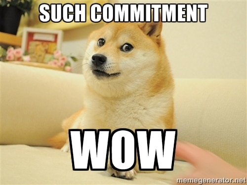 commitment dog