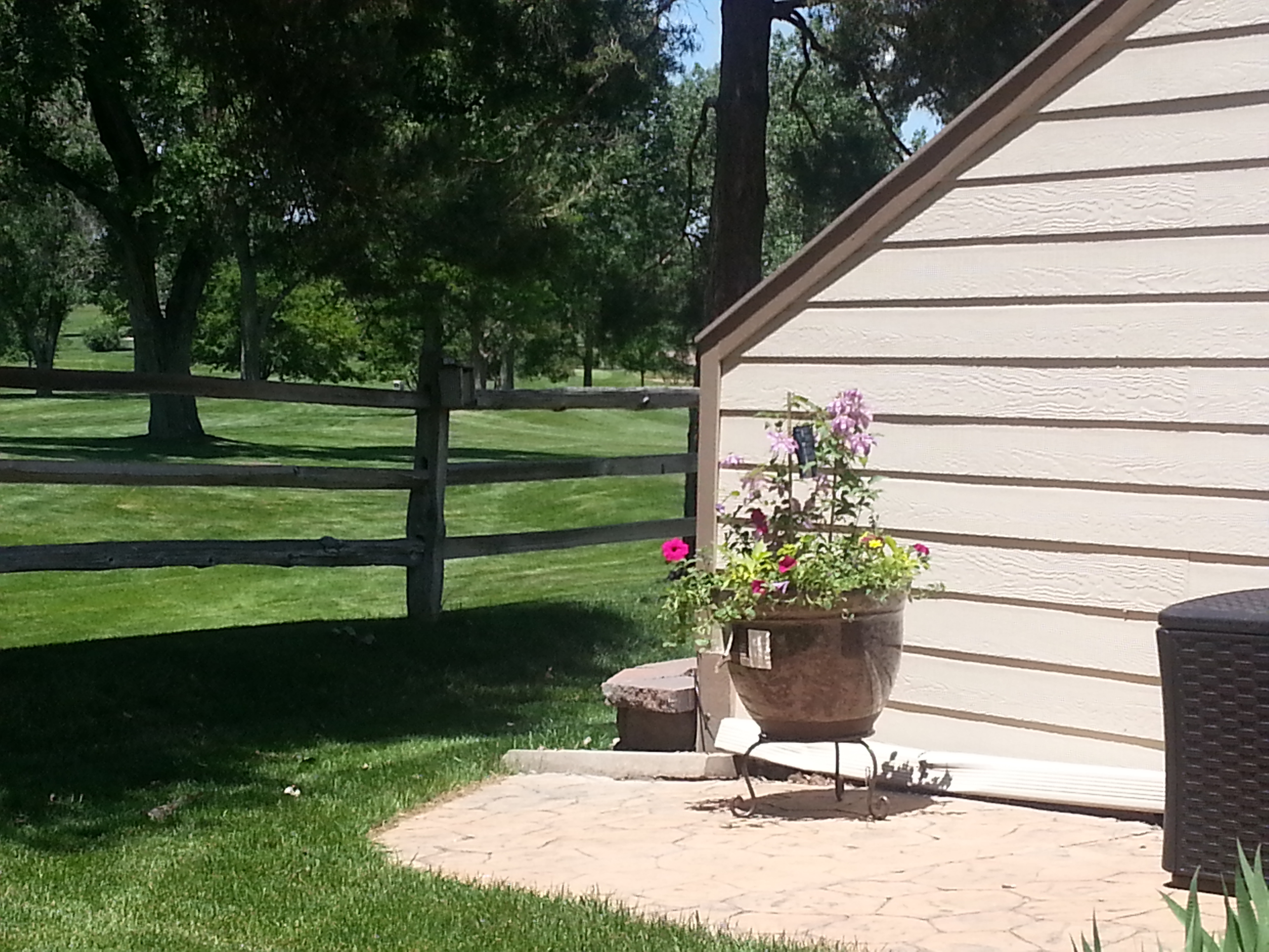 Lakewood Colorado Summer