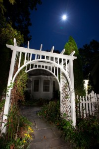 Gardens show their beauty in a new way in the moonlight.