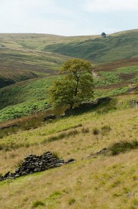 The Brontë sisters loved the beautiful Haworth moors.