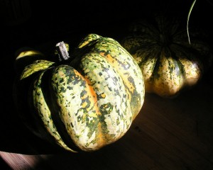 Squash is one of many beautiful speckled things--what others can you think of?