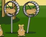 Hamster-flight