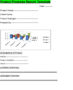 project-progress-report