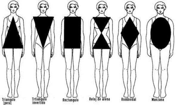 tipo de cuerpo Como es nuestra figura