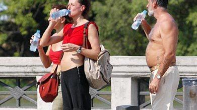 cuidado calor  Cuidados frente a las altas temperaturas