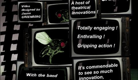 poster play the flies 2009