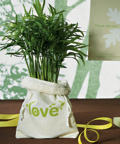 Lovely plant idea from Offbeatbride.com