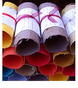 Plantable-scrolls-stack-2