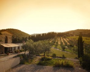 Podere Agli Ulivi - Eco Friendly farmhouse in Tuscany