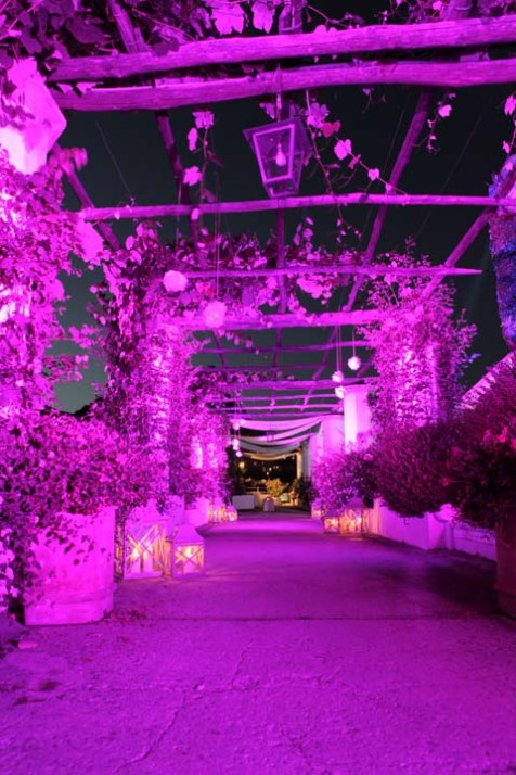 Pink lighting for wedding reception