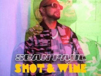 sean paul ft stefflon don shot & wine mp3