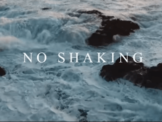 Flowolf ft Mayorkun & Peruzzi No Shaking music video