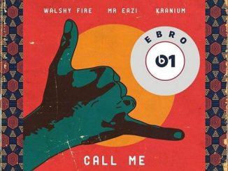 Walshy call me ft. Mr Eazi & Kranium mp3